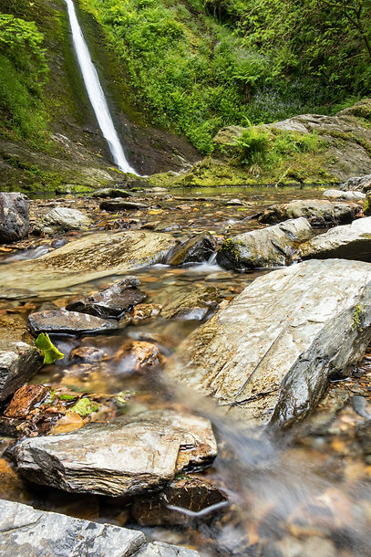 Lydford Gorge, National Trust in Devon by Paul Norris Photo