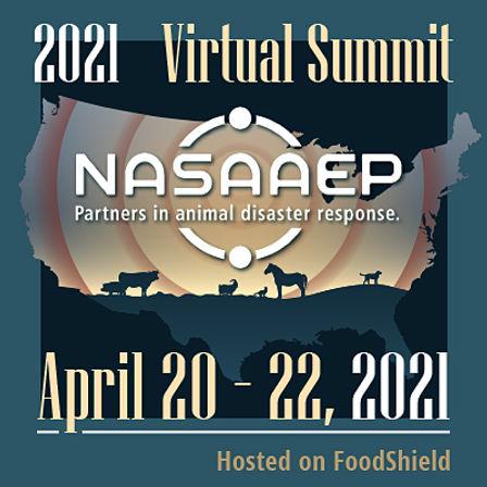 2021_NASAAEP-Virtual-Summit.jpg