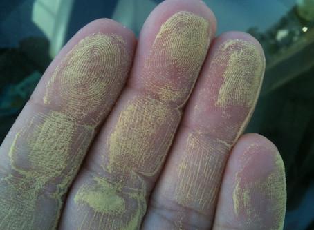Going Green Isn't Always Good!  5-Tips For Controlling Indoor Pollen.