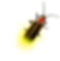 Firefly_Bug_2010.png
