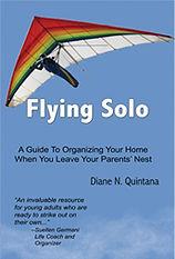 Flying Solo.jpg