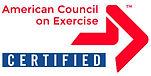 ACE_Certified.jpg