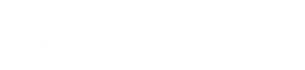 Pinnicale_South_logo.png
