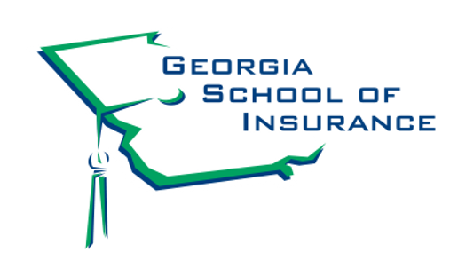 GSOI-Wix_Logo2.png