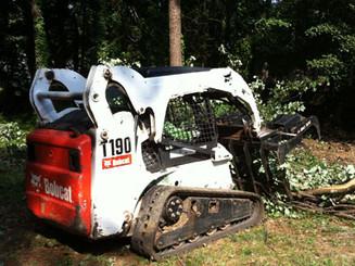 bobcat_tree_service_2.jpg