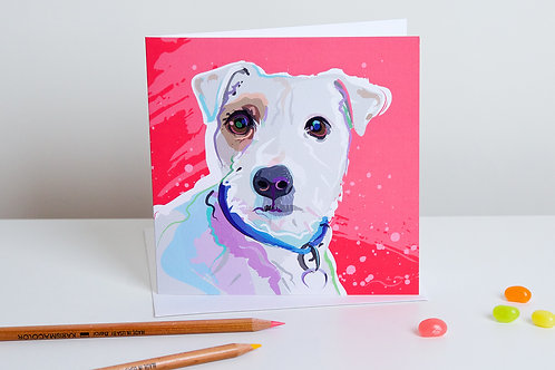 'Sopi' Jack Russell – Card