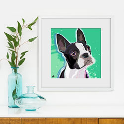 Katie Bell portraits french bull dogs