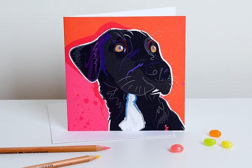 'Cara' Black Labrador – Card
