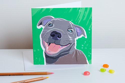 'Casper' Staffordshire Bull Terrier – Card