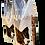 Thumbnail: DOG KIARA 15KG