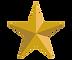 star website (1).png