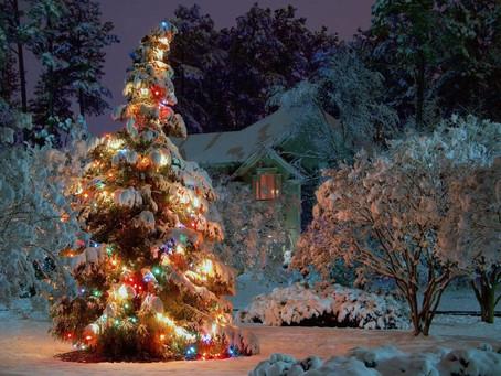Լեգենդ Սուրբ Ծննդյան Տոնածառի մասին