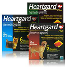 heartgard-plus-no-prescription.jpg