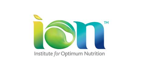 ION logo.JPG