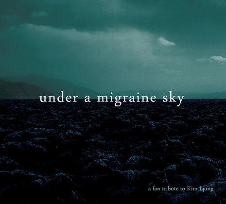 Under a migraine sky - a fan tribute to Kim Ljung
