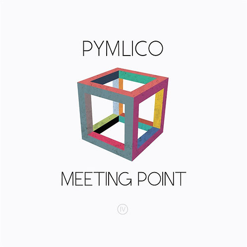 Pymlico - Meeting Point - LP