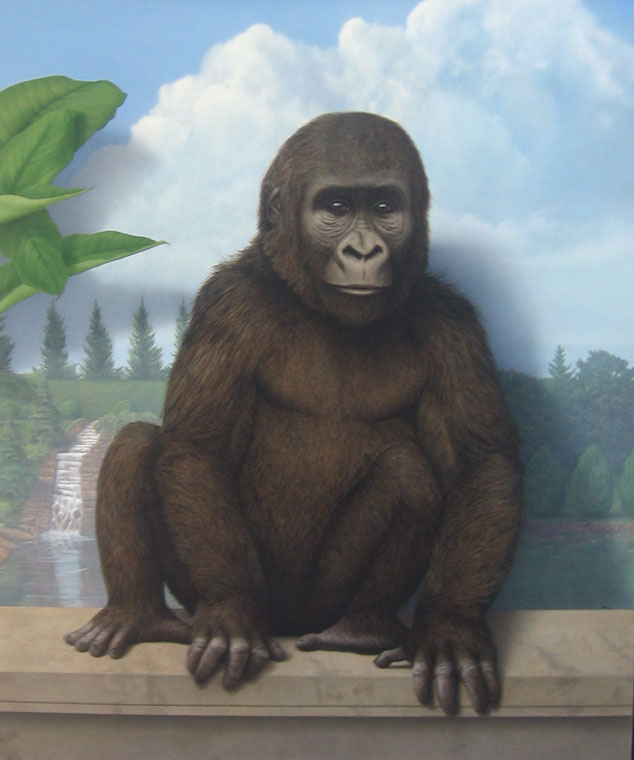 Gorilla, 2015