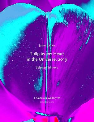 Lahey Tulip Hearts 2019 COVER.jpg