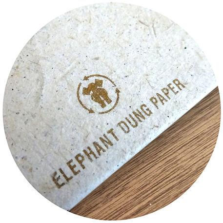 dung-paper.jpg