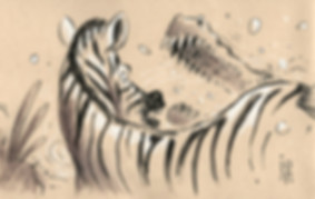zebre.jpg