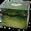 Thumbnail: Forest Lanterns