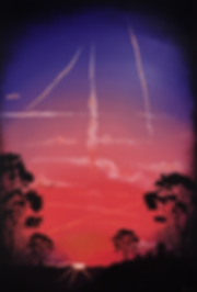 toxit sunset_2.png