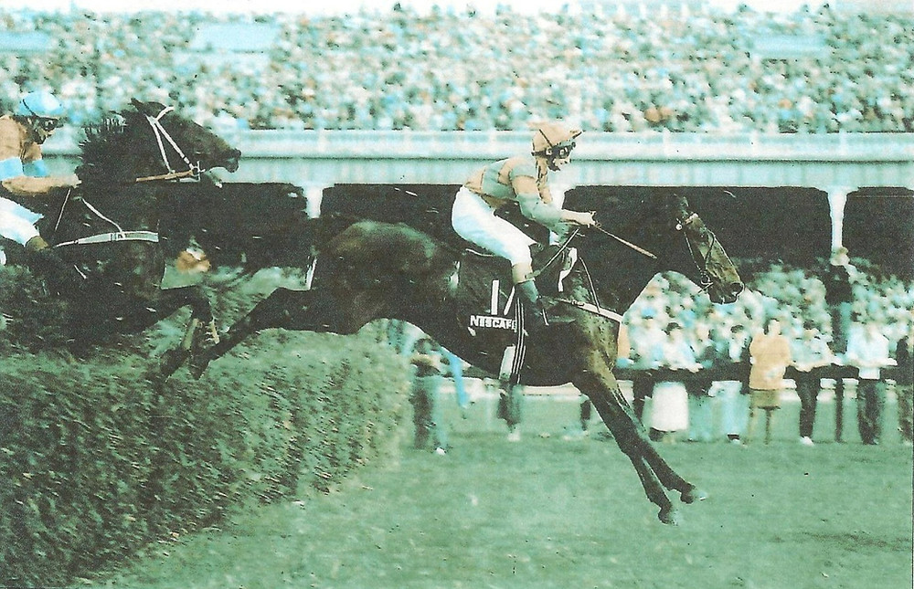 Great Northern Steeplechase