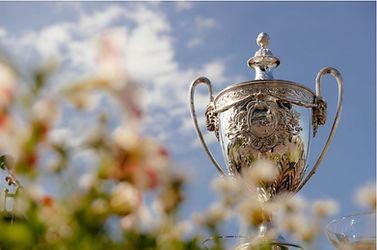 Auckland Cup trophy Ellerslie.JPG