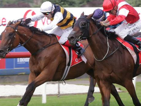 Lexus Melbourne Cup nominations released with some familiar names