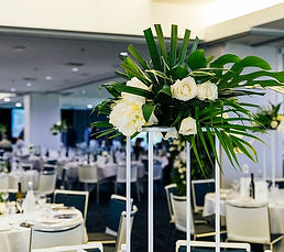 Melbourne Cup events in Auckland best of