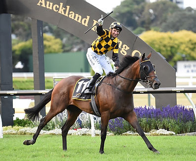 Sectional times for Auckland Racing Club