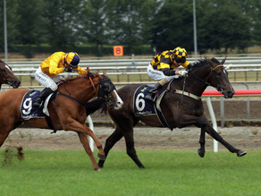 Auckland Cup Week®: Lindsays hoping to extend winning run with Vernazza in Saturday's Sistema Stakes