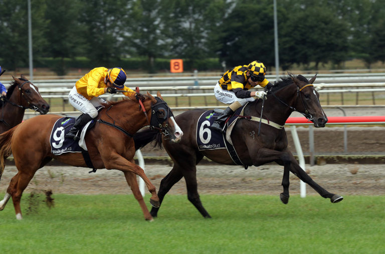 Vernazza winning the Gr.2 Matamata Breeders' Stakes (1200m). Photo: Trish Dunell