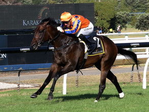 Auckland Cup Week®: Richards shoots for further Group One spoils