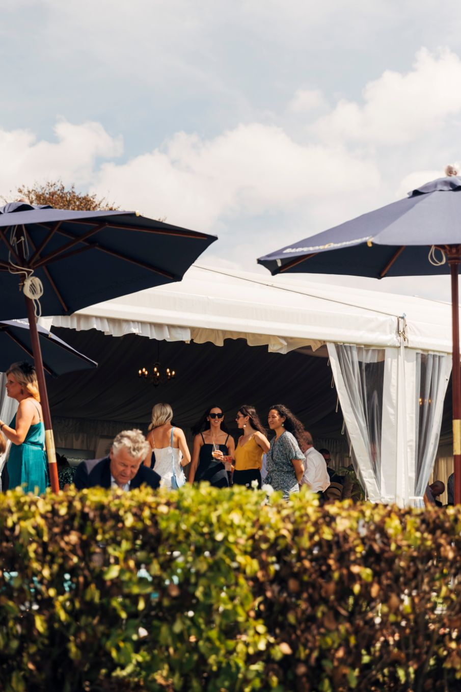 Outside looking in to our seasonal Champagne Lawn marquee