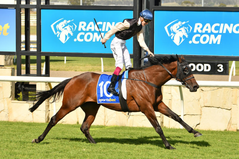 Etah James will contest the Gr.1 Barfoot & Thompson Auckland Cup (3200m). Photo: Quentin Lang