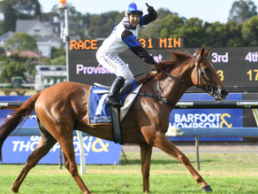 TRACKCHAT | Barfoot & Thompson Auckland Cup Day® | 13 March 2021