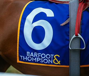 Thoroughbred racing terminology at Eller