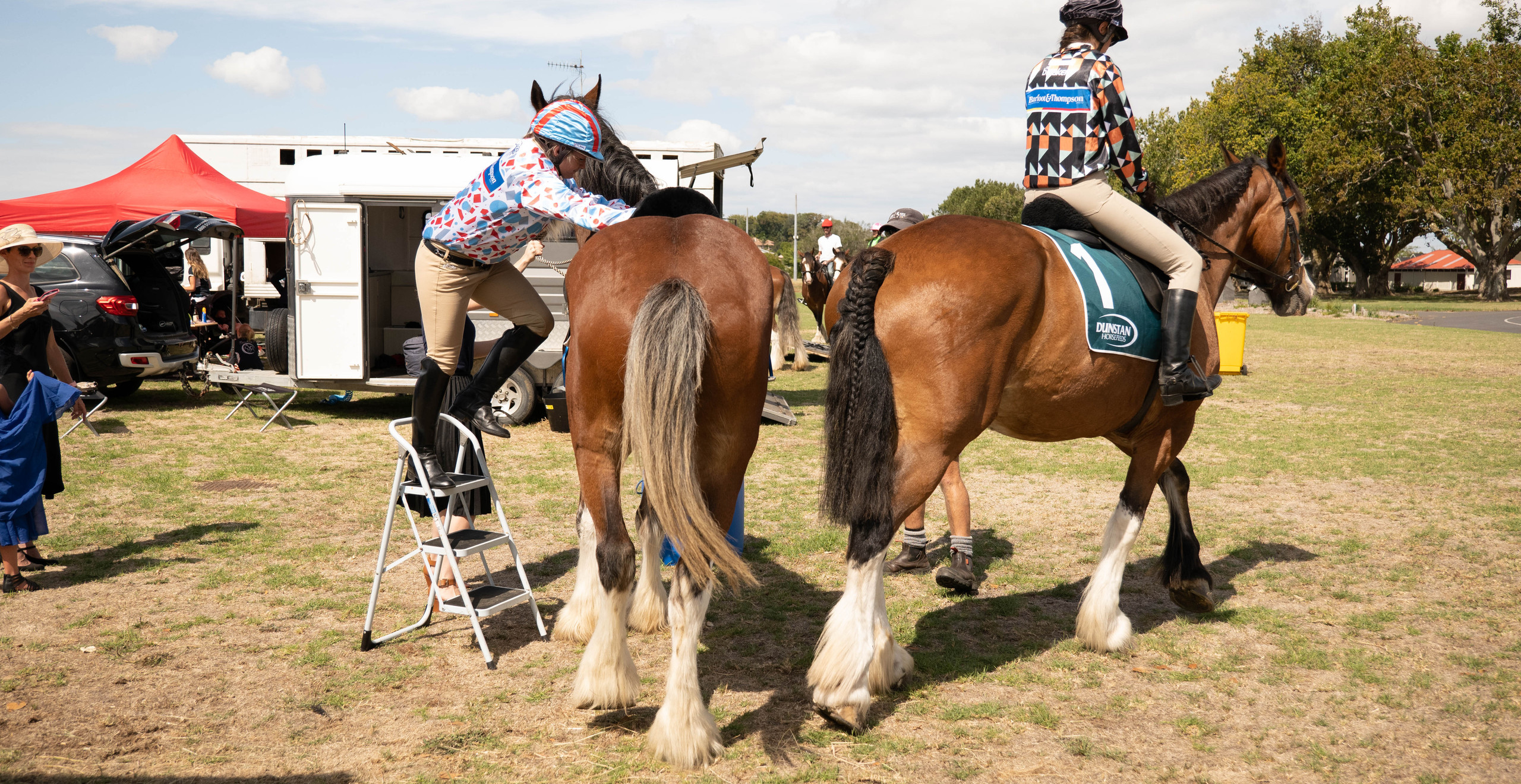 How to get onto a 18hh clydie