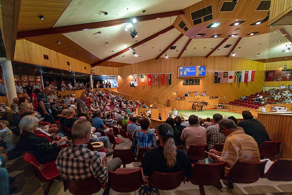 New Zealand Bloodstock's purpose built auditorium at Karaka