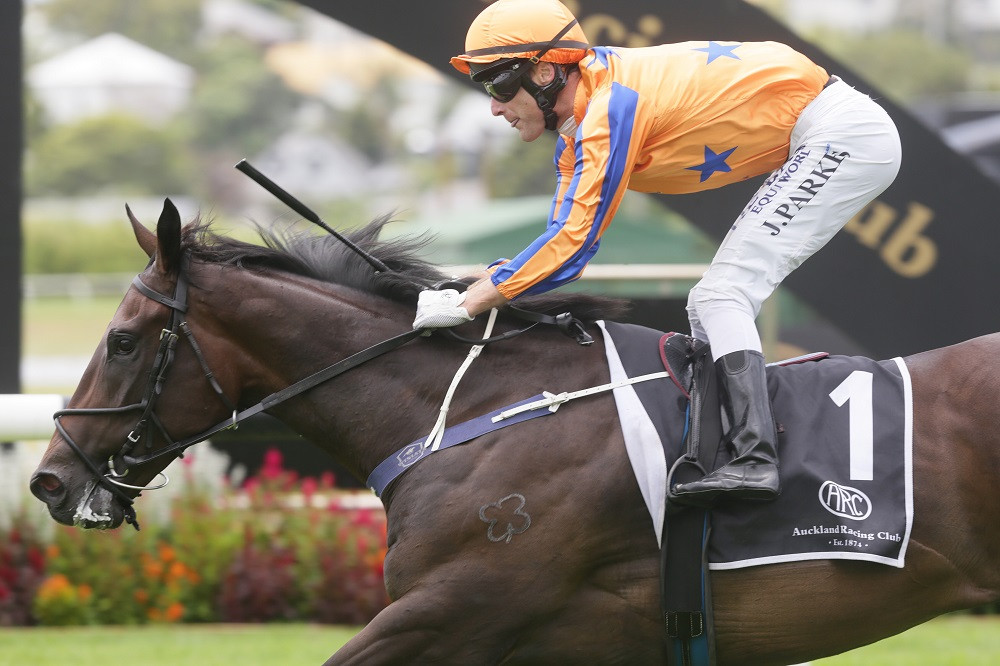 Te Akau Racing million-dollar hopeful, On the Bubbles, part-owned by Jarrod Smith