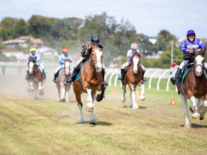 RESULTS | Dunstan Feeds Auckland Clydesdale Cup 2020