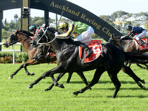 Sydney beckons Vodafone New Zealand Derby winner