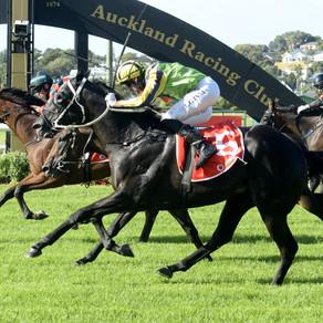 Sydney beckons Vodafone New Zealand Derby winner