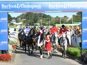 Barfoot & Thompson Auckland Cup Day: Barfoot & Thompson Auckland Cup Jockey Comments
