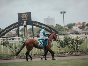 Name change from Auckland Racing Club Incorporated to Auckland Thoroughbred Racing Incorporated