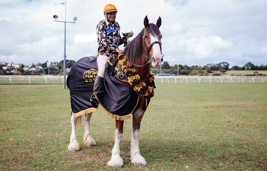 2019 Dunstan Feeds Auckland Clydesdale Cup winner: Grayson