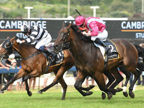 TRACKCHAT | SkyCity Boxing Day Races | 26 December 2020