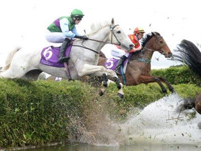 What's the difference between flat and jumps racing?
