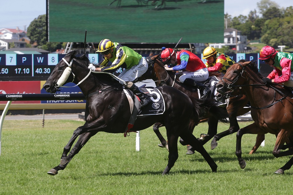 Milford storming home here at Ellerslie | Photo by Trish Dunell